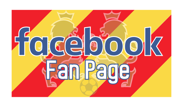 facebook-logo-custom